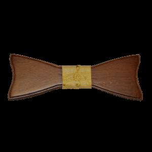 Modelo PM-01